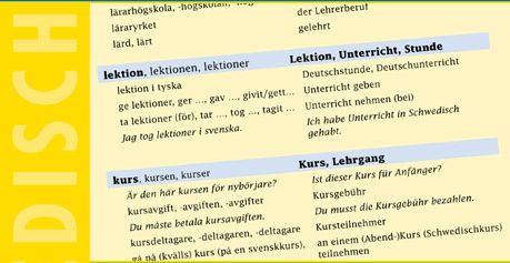 Gruund- und Aufbauwortschatz Schwedisch innen