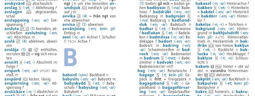 Langenscheidt Wörterbuch innen