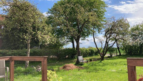 Garten Coworking Schlei