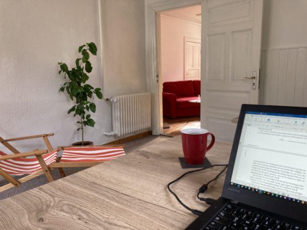 Sicht vom Schreibtisch aus im Coworking Schlei