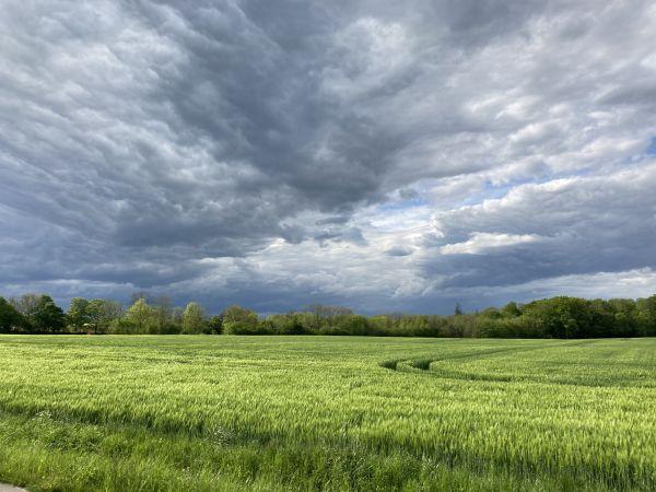 Dramatische Wolken über einem Feld